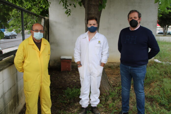 Colocación de 12 colmenas-trampas para la captura controlada de los enjambres de abejas en el término municipal de Lora del Río